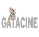 gatacine1
